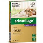 Advantage Large Cat Over 4kg – 6 pack