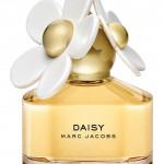 daisy-front